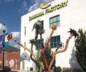The Banana Factory